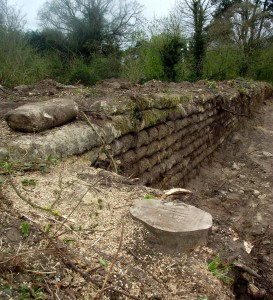 The recently cleared revetments