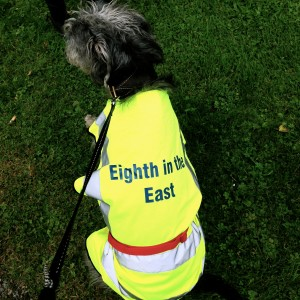 The Eighth in the East walks mascot