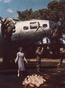 """farmers wife herds a flock of ducks past Master Sergeant JF Hallmaker and ground personnel of the 91st Bomb Group, whilst cleaning the guns on a B-17 Flying Fortress nicknamed """"Mary Lou"""". Image courtesy of the American Air Museum. FRE3546"""